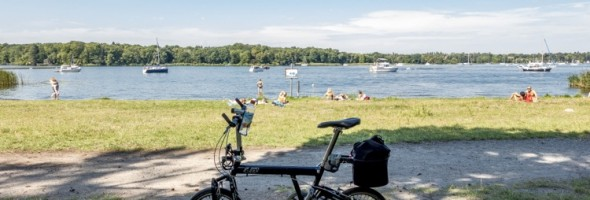 wannsee13