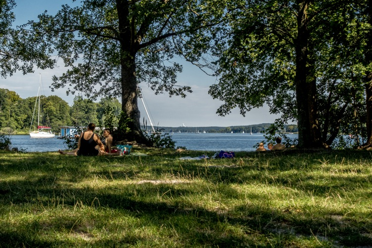 wannsee15
